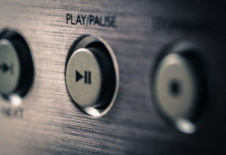 plant_music_play_break.jpg